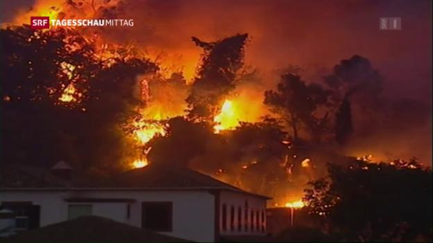 Video «Waldbrände in Portugal breiten sich aus» abspielen