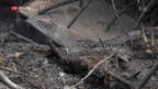 Video «FOKUS: Die Zerstörung im Örtchen Mati» abspielen