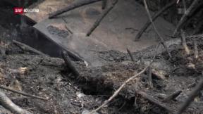 Video «FOKUS: Die Zerstörung im Örtchen Mati » abspielen