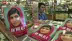 Video «Ein Leben unter der Taliban im Swat-Tal» abspielen