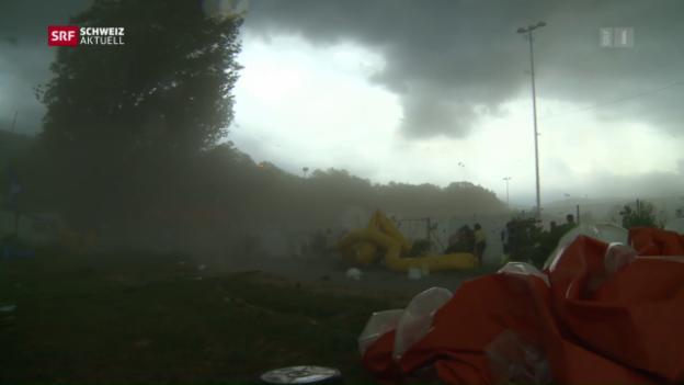 Video «Evakuierung am Turnfest kam zu spät» abspielen