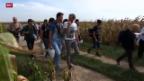 Video «FOKUS: Flüchtlinge erreichen Kroatien» abspielen