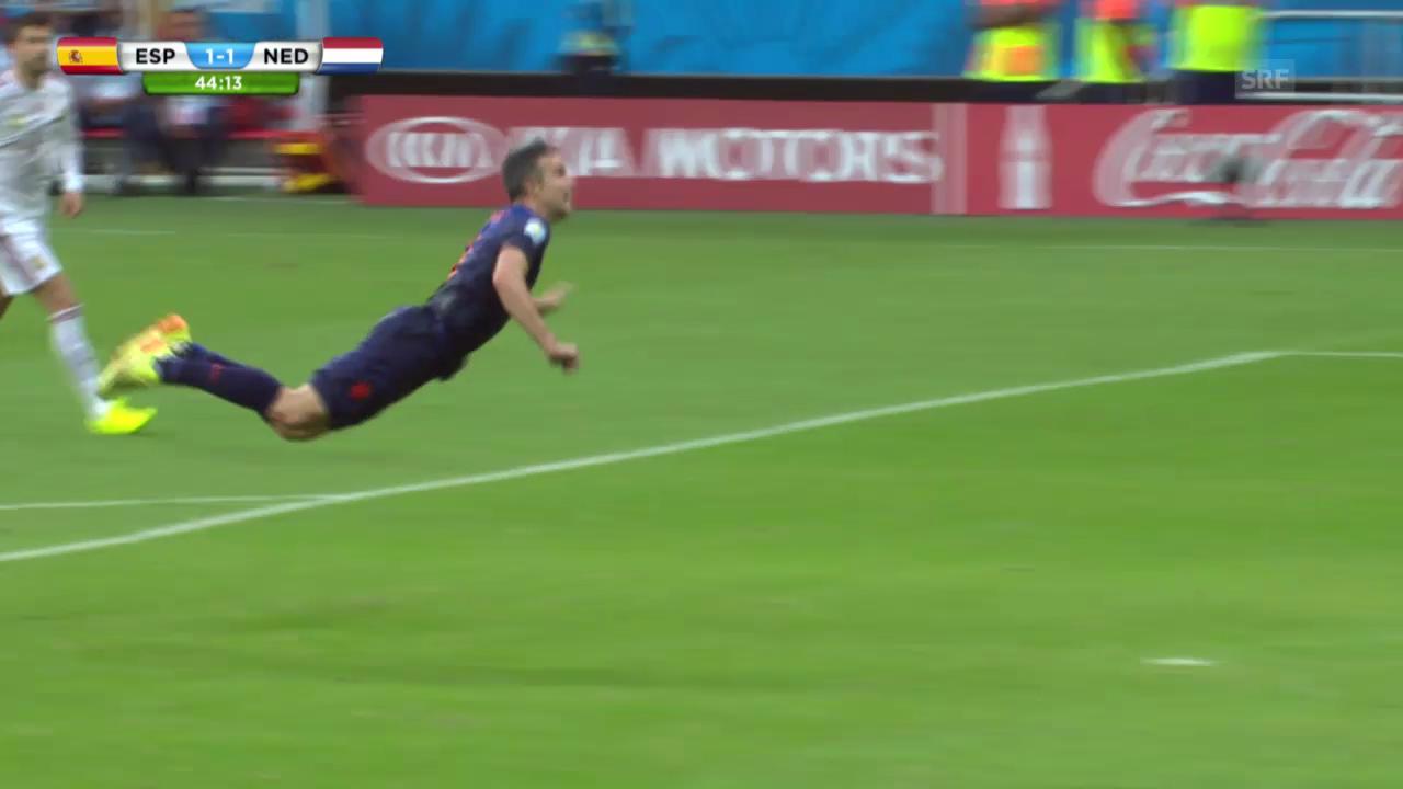 FIFA WM 2014: Die Tore von Robin van Persie
