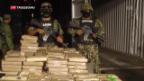 Video «Drogenkrieg in Mexiko» abspielen