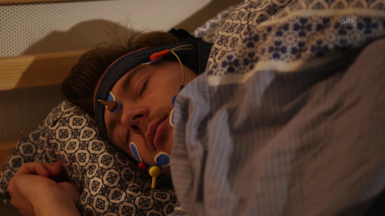 Schlau im Schlaf