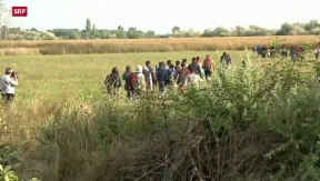 Video «UNO kritisiert EU-Flüchtlingsmanagement» abspielen