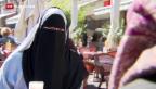 Video «Nationalratskommission für Burka-Verbot» abspielen