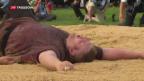 Video «Christian Stucki siegt am Unspunnen-Schwinget» abspielen