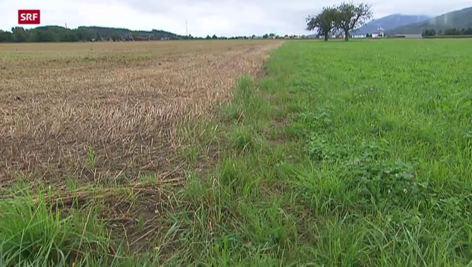 Massnahmen gegen Nitrat fruchten langsam