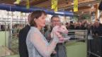 Video «An der Olma mit Doris Leuthard, Hans-Rudolf Merz und einem Säuli» abspielen