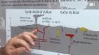 Video «Die Ascheproben vom Eyjafjalla» abspielen