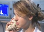 Video «Was rauscht in der Muschel?» abspielen
