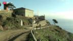 Video «Die Gefängnis-Insel Gorgona» abspielen