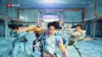 Video «Peppige Jungs aus Südkorea» abspielen