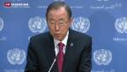 Video «Datum für Syrien-Konferenz in Genf steht fest» abspielen