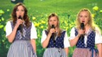 Video «Geschwister Weber mit «Drei Schwöschtere»» abspielen