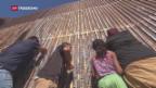 Video «Lafarge-Holcim will Mauer zu Mexiko bauen» abspielen