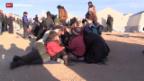 Video «Flüchtlingsdrama an der syrisch-türkischen Grenze» abspielen