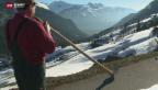 Video «Leben für das Alphorn» abspielen