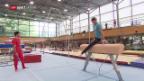 Video «Das Männerteam der Kunstturner vor Rio» abspielen