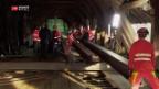 Video «Notsteg für Oltner Holzbrücke» abspielen