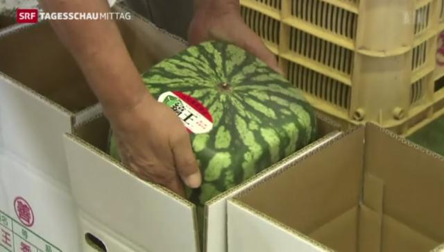 viereckige wassermelonen aus japan tv play srf. Black Bedroom Furniture Sets. Home Design Ideas