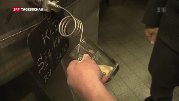 Video «500 Jahre Reinheitsgebot für deutsches Bier» abspielen