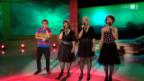 Video ««Viva Volksmusik» 2012 – live aus Kreuzlingen» abspielen