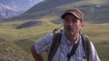 Link öffnet eine Lightbox. Video David Jenny: «Hier wurde erstmals ein Jungvogel ausgeflogen.» abspielen
