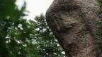 Video «Sagenhaftes aus Küssnacht am Rigi» abspielen