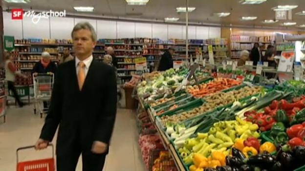 Video «Wirtschaft und Gesellschaft: Sparen (8/12)» abspielen