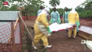 Video «Wie stoppt man Ebola» abspielen