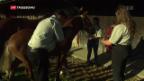 Video ««Marché Concours» in Saignelégier» abspielen