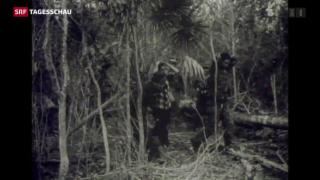 Video «Wie sich Feinde näher kommen» abspielen
