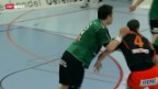 Video «Handball: Thun - Kadetten» abspielen