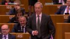 Video «Ukip-Chef Nigel Farage tritt zurück» abspielen