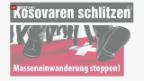 Video «Bundesgericht bestätigt «Schlitzer-Urteil»» abspielen