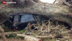 Video «Zyklon «Pam» bringt Zerstörung über Vanuatu» abspielen