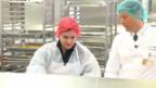 Video ««Einstein Unterwegs»: Der Gourmetkoch in der Flugzeugküche» abspielen