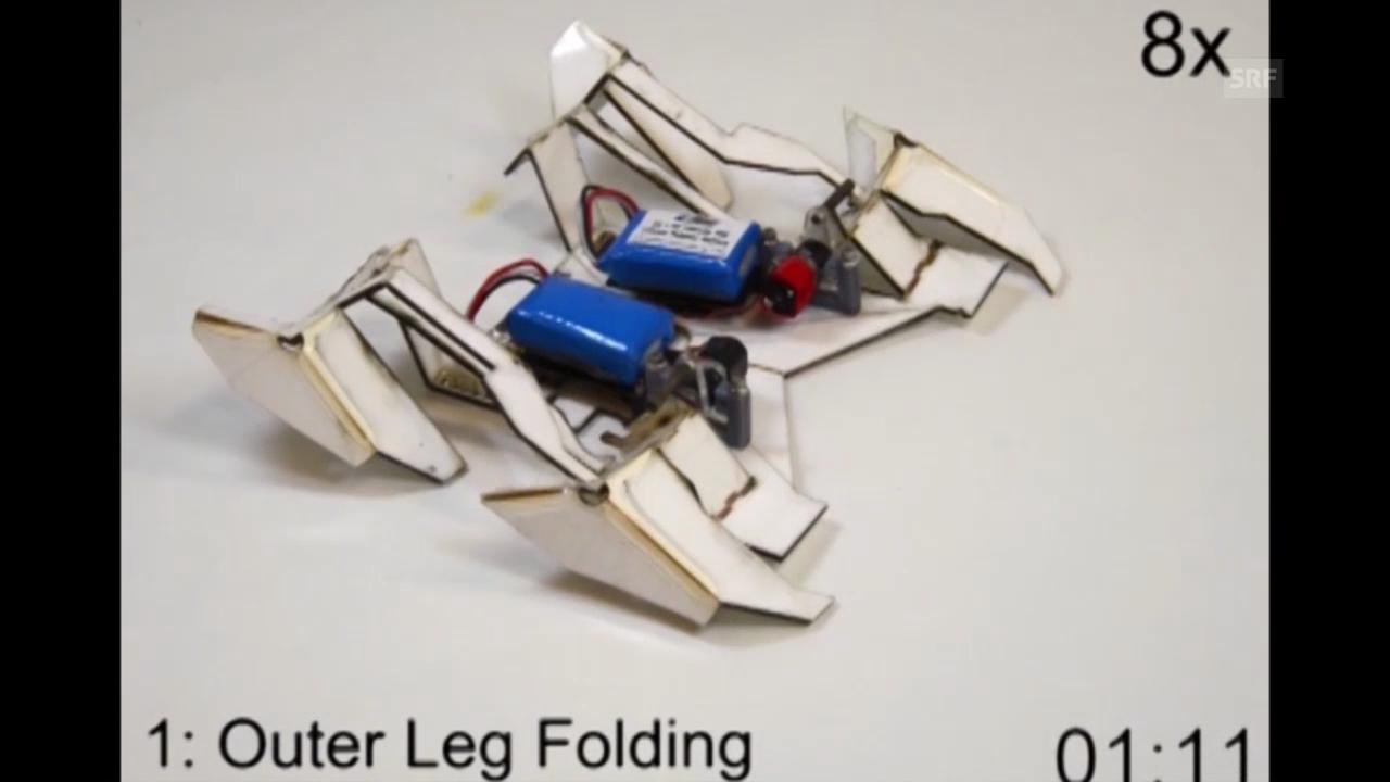 Origami-Roboter: So baut er sich auf