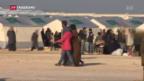 Video «65 Millionen Menschen auf der Flucht» abspielen