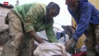 Video «Illegales Goldschürfen in Südafrika» abspielen