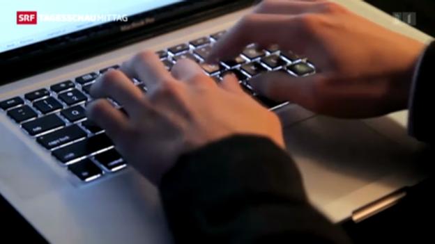 Video «Streit um Hacker-Angriffe» abspielen