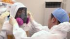 Video «Nach Fukushima» abspielen