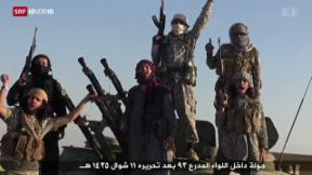 Video «Wie weiter mit Dschihad-Rückkehrer?» abspielen