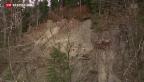 Video «Erdrutsch im Kanton Appenzell Ausserrhoden» abspielen
