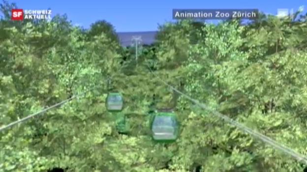 Video «Umstrittene Zoo-Seilbahn» abspielen