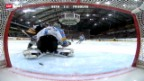Video «Eishockey: Eishockey: 2. Playoff-Finalspiel Bern - Freiburg» abspielen