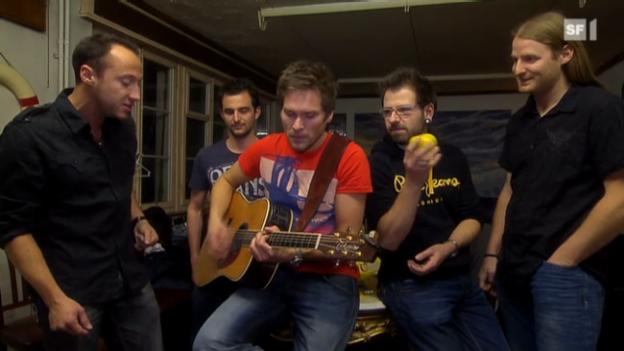 Video «Plüsch geben ihr Comeback» abspielen