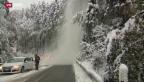 Video «Erster Schnee verursacht Verkehrsprobleme» abspielen